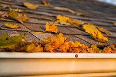 Leaves in Gutter and Roof of a House