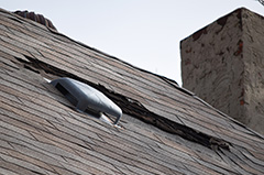 Damaged Roof Shingles During Winter