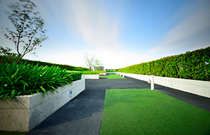 Green Roof Installation and Maintenance