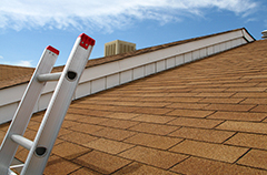 Roof view with ladder overlooking reddish shingles