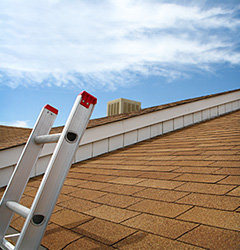 Roof View with Ladder