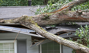 Insurance Claim For Storm Damage To Your Roof