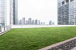A Green Roof With Plants and Grass